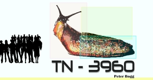 TN-3960